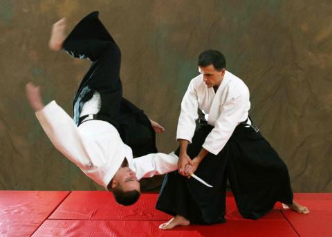 Aikido The Martial Arts Academy Tauranga