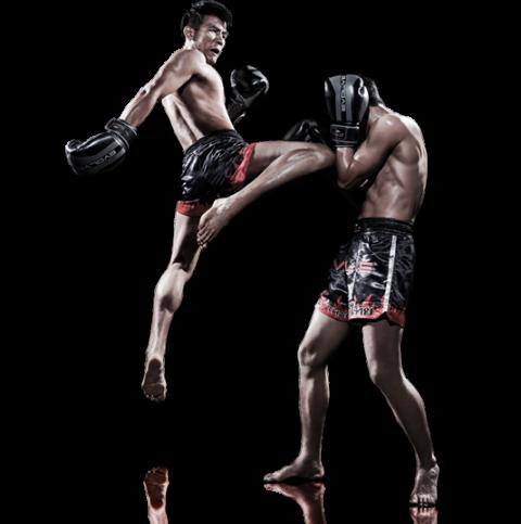 Muay Thai The Martial Arts Academy Tauranga