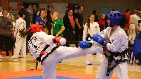 Taekwon-Do The Martial Arts Academy
