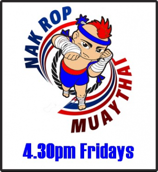 Nak Rop Kidz Muay Thai The Martial Arts Academy Tauranga