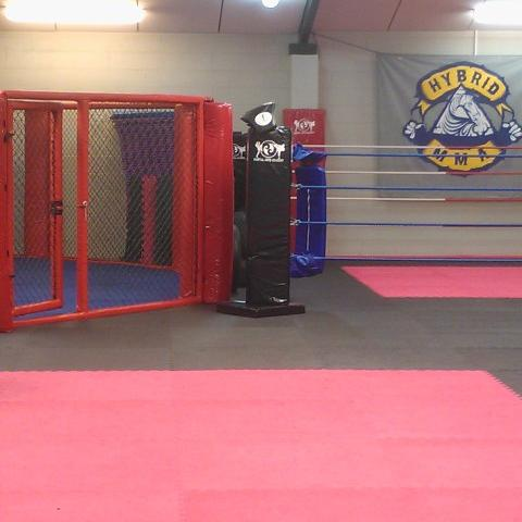 Training Area 1 The Martial Arts Academy Tauranga