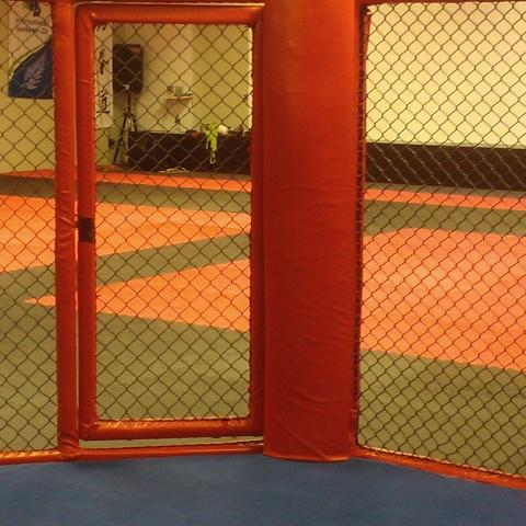 The MMA Octagon The Martial Arts Academy Tauranga