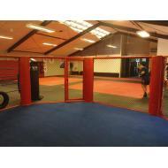 The MMA Octagon The Martial Arts Academy Tauranga