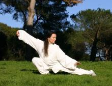 Tai Chi The Martial Arts Academy Tauranga